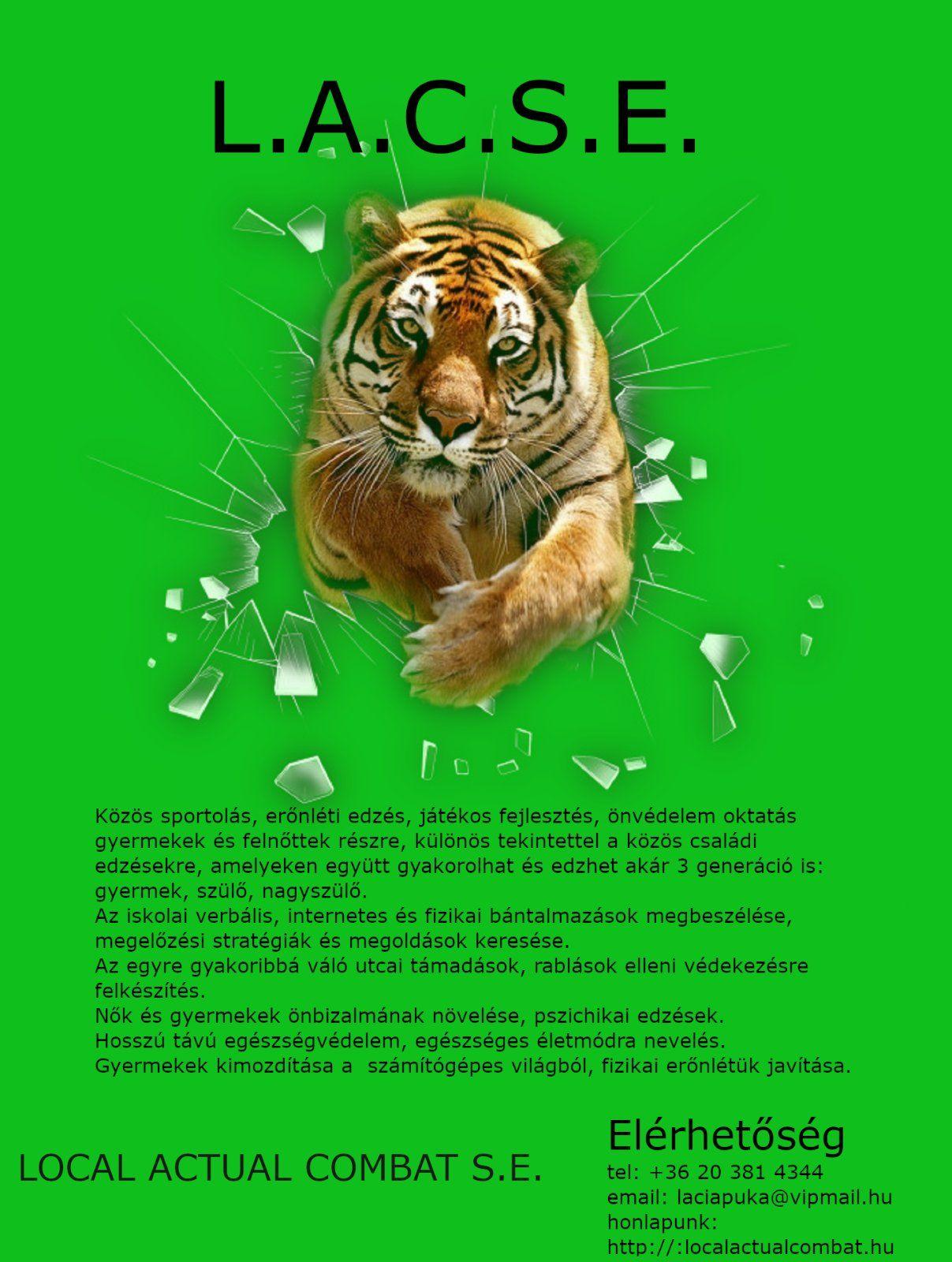 I. Fejezet Felkészítő gyakorlatok szablya nélkül 1. Bevezetés - PDF Free Download